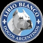 LirioBlancoDogosArgentinos